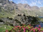 Détails :  Gîte Arrens : Hautes-Pyrénées : week end amoureux et insolite et pas cher à la montagne dans le Val d'Azun- Arrens